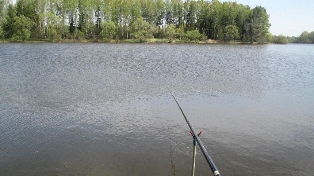 Рыбалка на Истре