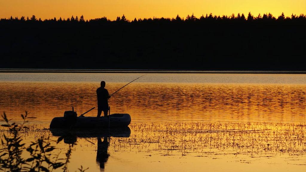 Где порыбачить в Одинцовском районе
