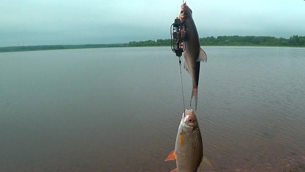 Рыбалка на Рузе