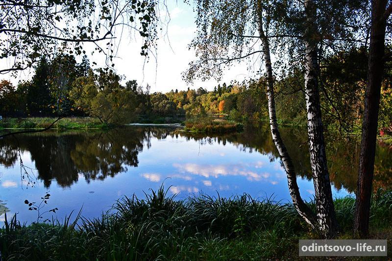река Вяземка Одинцовский район